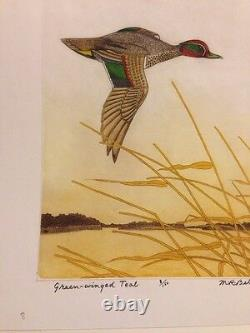 M R Bebb Green-Winged Teal 8/150 1970 Bird Etching Print Picture Art