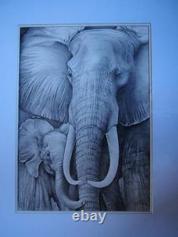 Stunning Original Pencil Drawing Artwork Picture by Up & Coming Artist Elephants