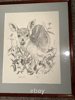 Terryry Wormsly original Signed pencil print Spotted Gem 117/244 As Pictured