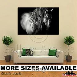Wall Art Canvas Picture Print Drawing of a Horse 3.2