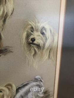 William Timym Original Signed Framed Pastel Charcoal Picture 1973 Tessy Bear